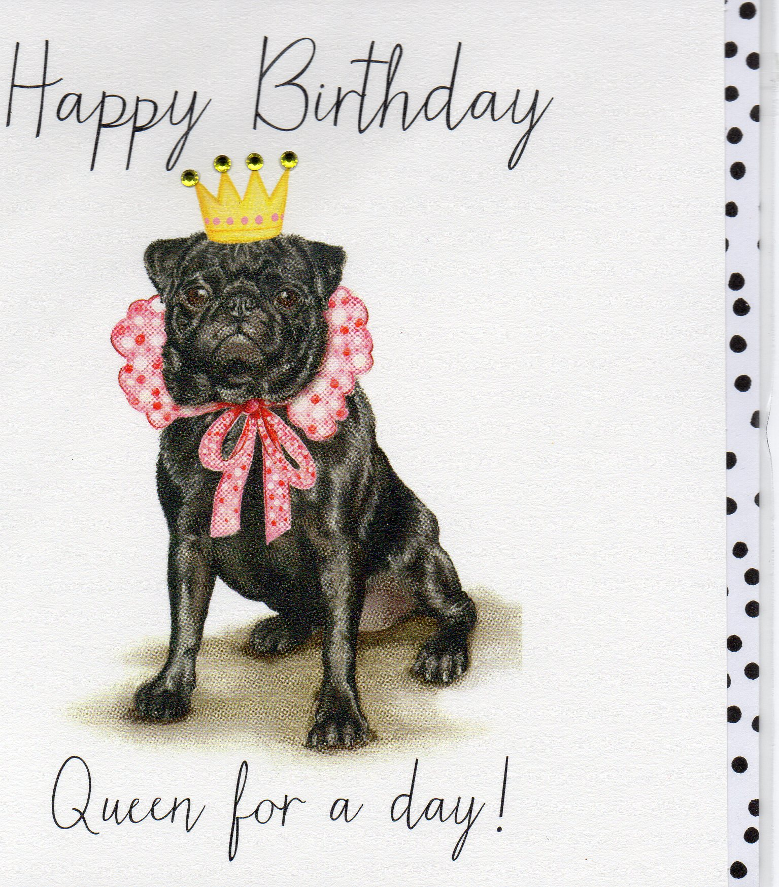 OLIVE-queen for a day bday