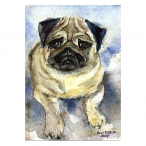 Elly Nillsson 'Blue' Fawn Pug A5 Card